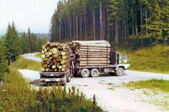Transporte Tatschl